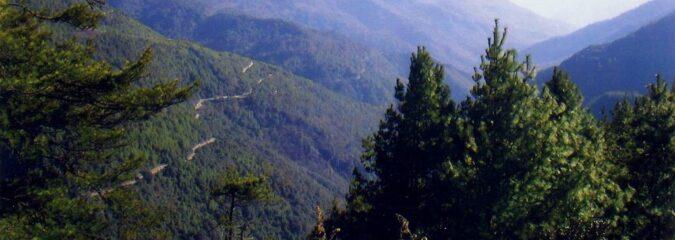 N. Bengal nature scene